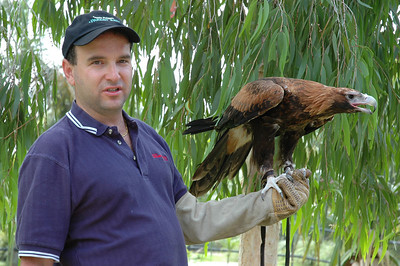 Zevy holding bush tail eagle
