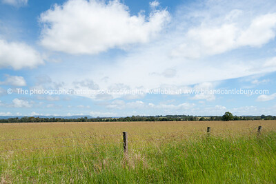 Australia farmland landscape.  see also http://smu.gs/14LcY8Y Fine Art Photograhpy for landscapes.