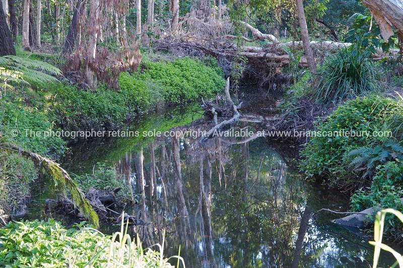 The creek below de Paul Estate Manor.