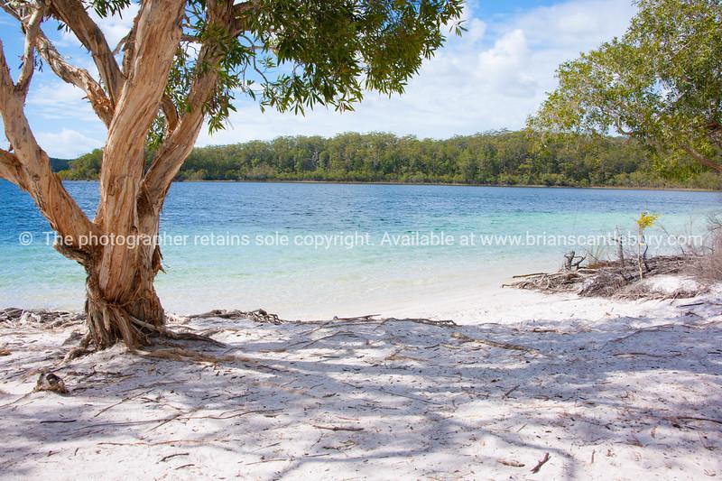 Fraser Island Lake McKenzie.