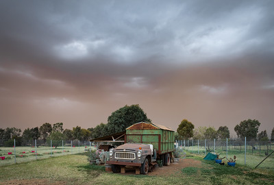 Dust storm across the chook shed ... Downside