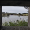 View from Duck Hide at Tamar Wetlands