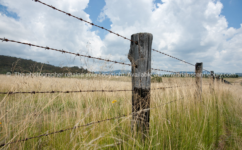 "Fenceline through rural landscape near Tenterfield, Australia.<br />  see also <a href=""http://smu.gs/14LcY8Y"">http://smu.gs/14LcY8Y</a> Fine Art Photograhpy for landscapes."