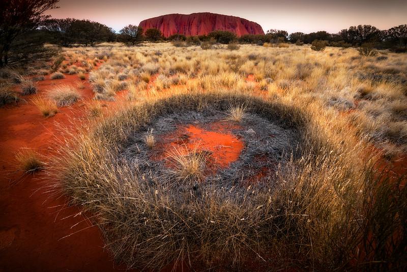 Uluru and Spinifex