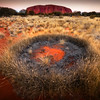 Uluru and Spinifex