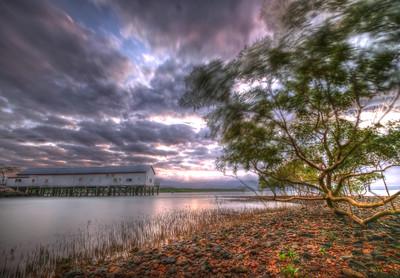 Sugar Wharf - Port Douglas, Australia