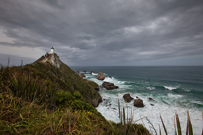 10.25.11 Nugget Point Lighthouse. South Island, NZ