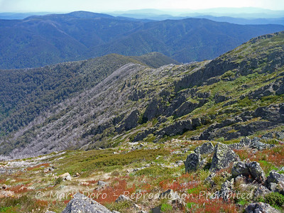 View from the summit of Mt Buller