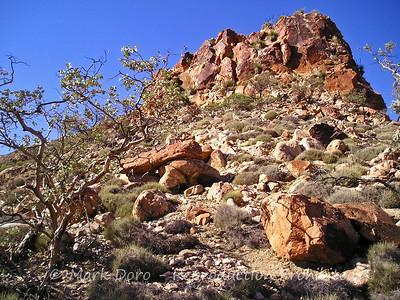 Rocky outcrop, Arkaroola