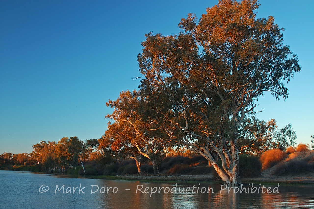 Cooper Creek Sunset, near Innamincka