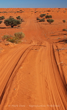 Simson Desert Track