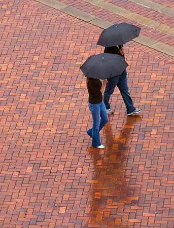 A Walk in the Rain, Sydney