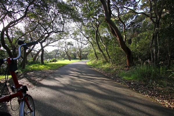 Nielsen Park - Vaucluse