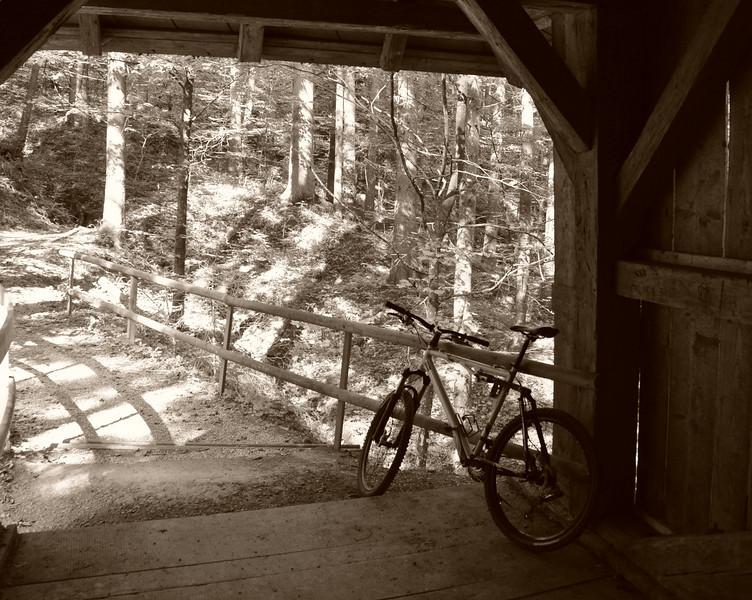 Near Dornbirn, Austria Fall 2009