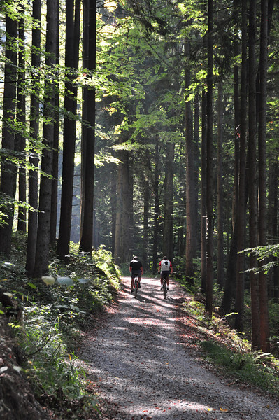 Near Dornbirn, Austria - Fall 2009