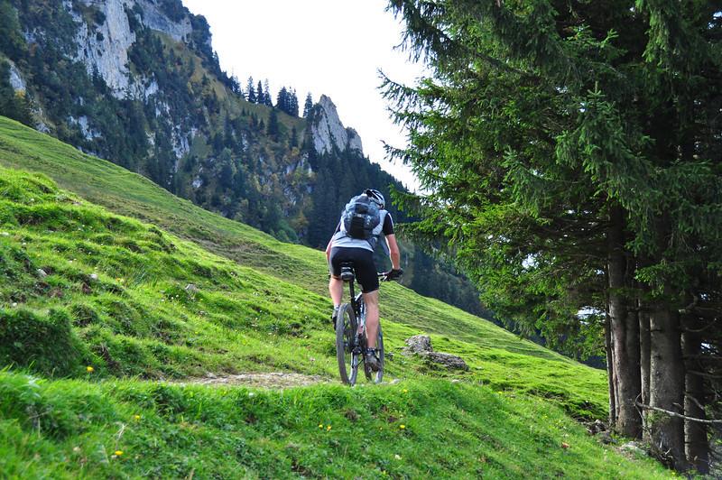 Near Sax, Switzerland Fall 2009