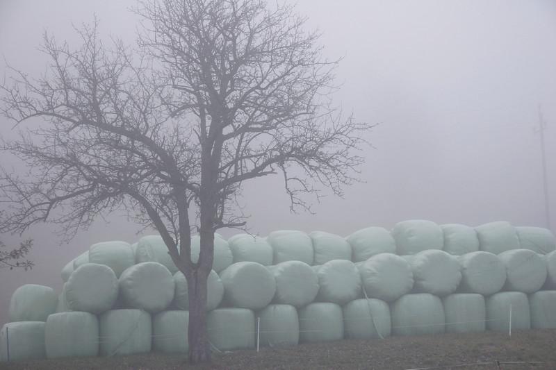 Heuballen im Nebel