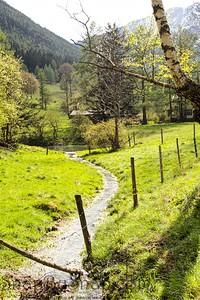 Creek Through Austria Farm