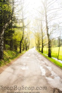 Spring Country Road