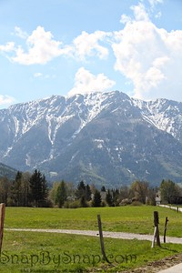 The Alps with a Pasture