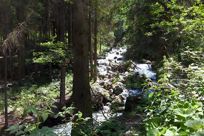 Start of the climb to Stuiben Fall