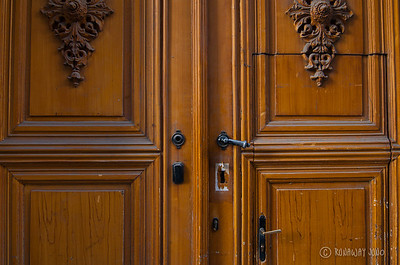 Old door of Vienna, Austria