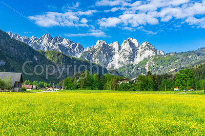 Mountains above fields of yellow