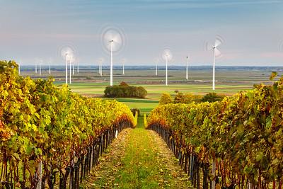 Green energy in autumn