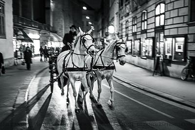 Town Trot  AugustinerStraße, Vienna, Austria.