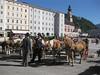 Austria_0064