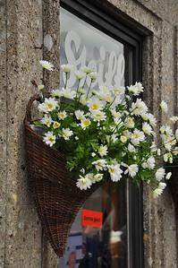 Steiff Store in Salzburg, Austria 4.13