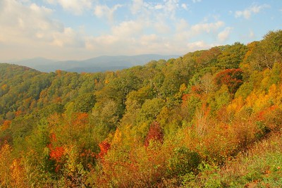 Some Fall color along the Blue Ridge Parkway in NC.