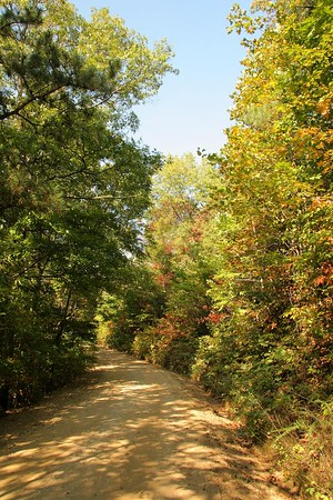 """Tatham Gap Road. Built by the US Army in 1836 to transport Cherokee Indians to Fort Montgomery in Robbinsville. There they were held until the removal to Oklahoma. It is considered part of the """"Trail of Tears so named due to the death of around 4000 Cherokees during the removal."""