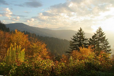 The Sun is finally up at Clingman's Dome.