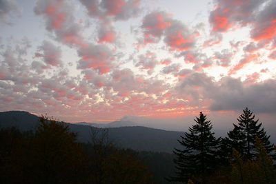 More Sunrise on Clingman's Dome.