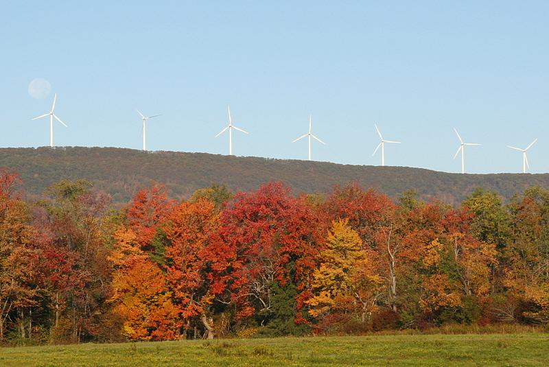 Waymart (PA) wind farm and harvest moon.