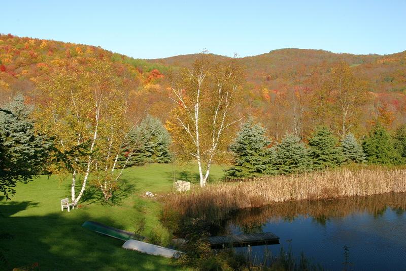 Doscher Pond, North Branch.
