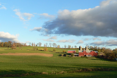 Brookview Farm near Chester, NY.
