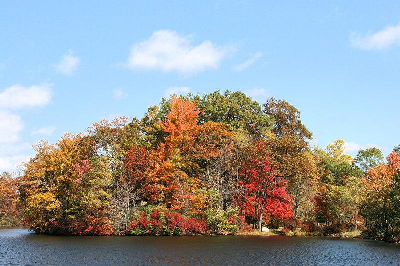 Lake Sebago. Harriman SP, NY