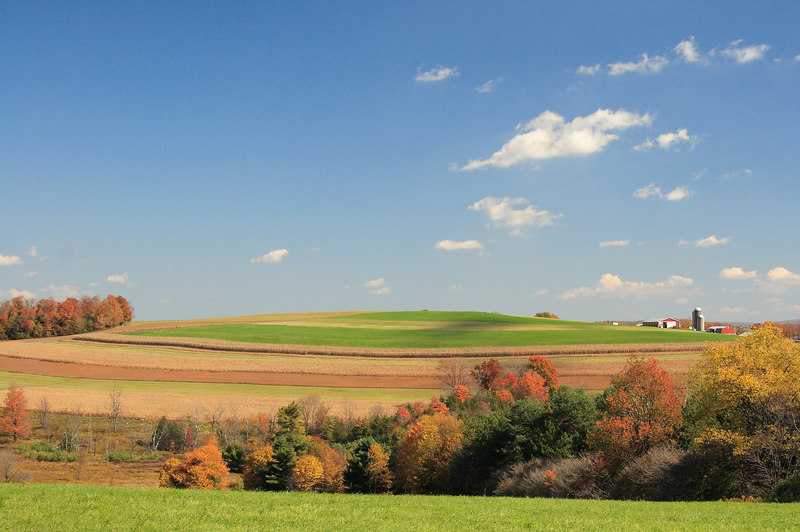 PA farm.