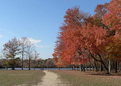 Autumn on Long Island