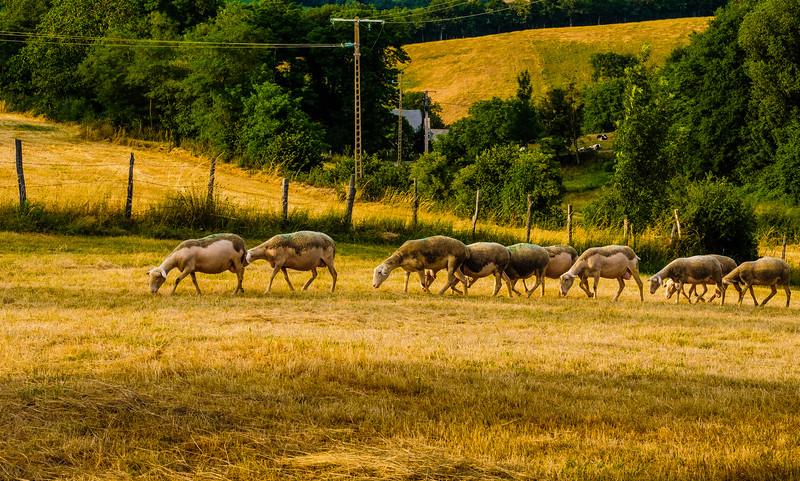 Aveyron (Lunac)