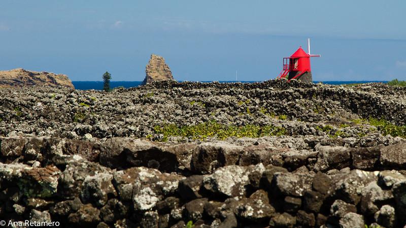 Molino y paisaje cultural de la viña de Pico