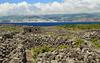 Paisaje Cultural de la Viña de Pico  clasificada  como Patrimonio Mundial de la UNESCO. Son característicos los muros de piedra erguidos paralela y perpendicularmente a la línea de costa para separar la viña, cultivada en suelo de lava . Al fondo la isla de São Jorge