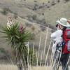 Yucca, Davis Mountain State Park