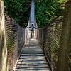 Swinging Bridge, Lynn Canyon Park, Vancouver