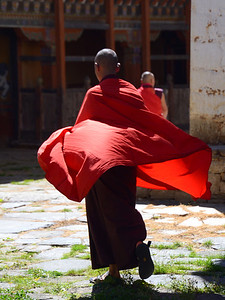 monk in robes