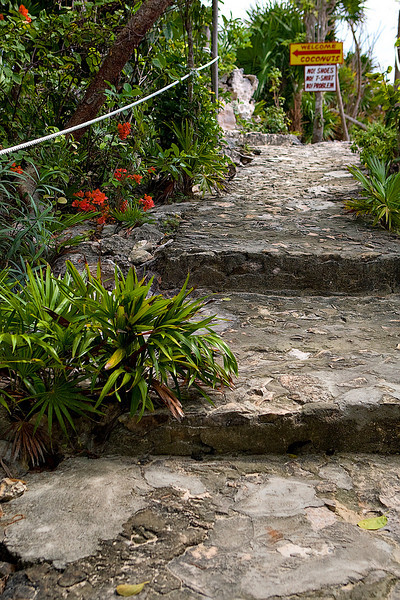 "SIDEWALK LEADING TO ""COCONUTS"" BAR AND GRILL - COZUMEL, MEXICO"