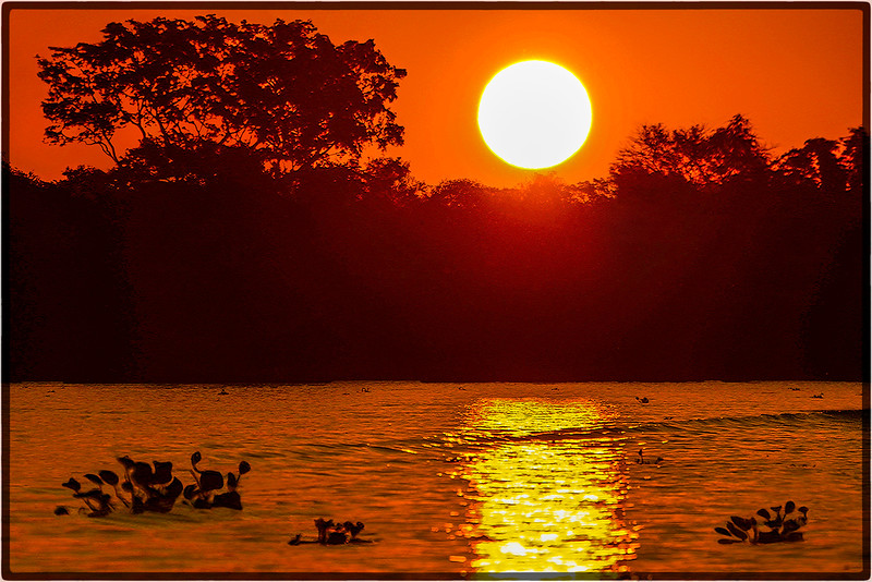 Sunrise on the Cuiaba River, Brazil