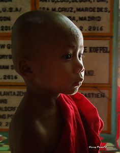 monks sometimes start at a very early age. For many kids it is the route to education.